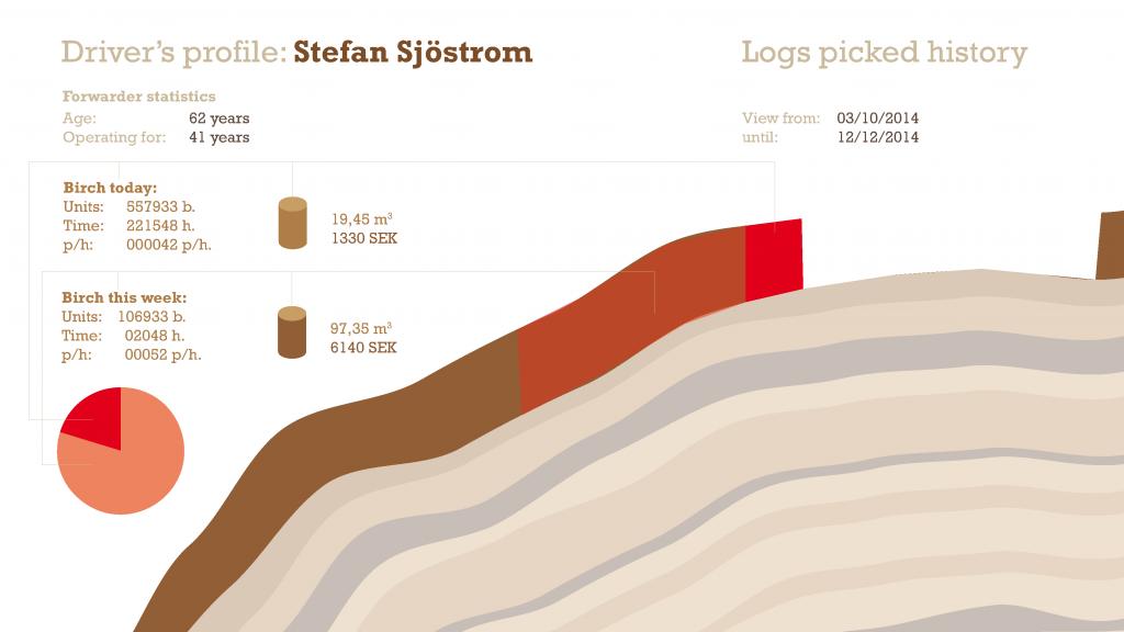 Driver's profile sketch: detail information view